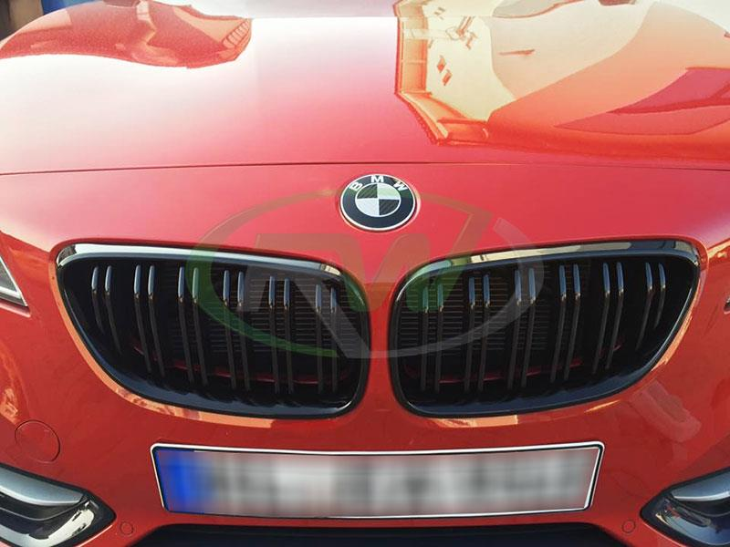 BMW F22 228i in red with some RW Carbon Double Slat Gloss Black Grilles