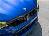 BMW F90 M5 Carbon Fiber Grille Surrounds /