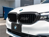BMW G30 Carbon Fiber Grille Surrounds /